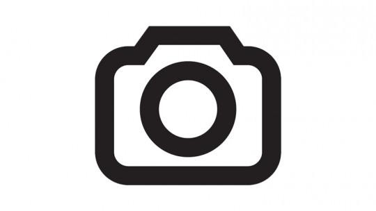 wensink-green-kia-ev6