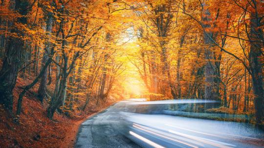aangenaam-de-herfst-door-leadimage